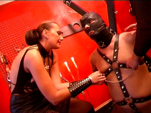 hot bdsm action